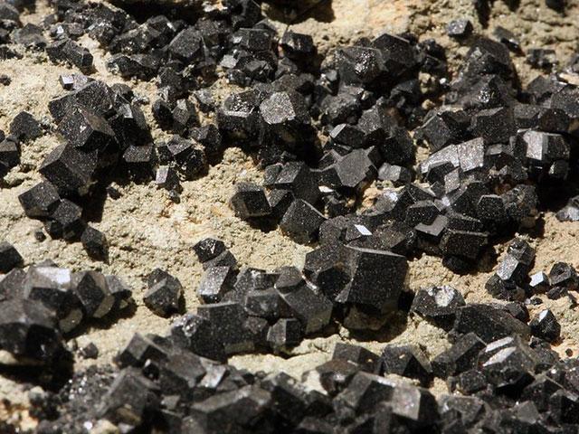 Чёрный гранат